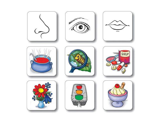 magneticke karty na vyuku temy spoznavanie zmyslov